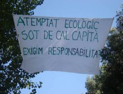 atemptat_ecologic.jpg